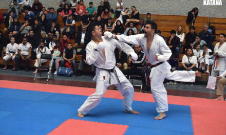 XXXI COPA FUNAKOSHI: Video, Reseña y Fotos